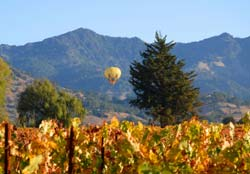 Napa Hot Air Balloon Rides